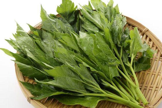 Ashibata je Japonská dlouhověká rostlina. Používá se jako antioxidant, dokáže neutralizovat toxiny v těle.
