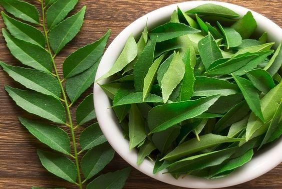 """Léčivé účinky byliny - Zaderah Indický nazývaný také jako """"Neem"""", je známý jako indická léčivá bylina. Pozitivně působí na obranyschopnost organismu a zbavuje tělo toxinů."""