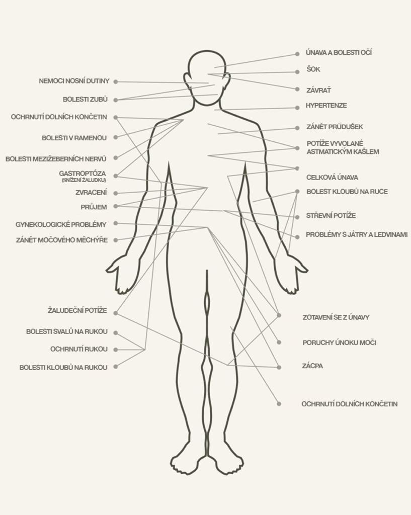 Reflexní body na těle podle terapie Jamu, Kutus Kutus