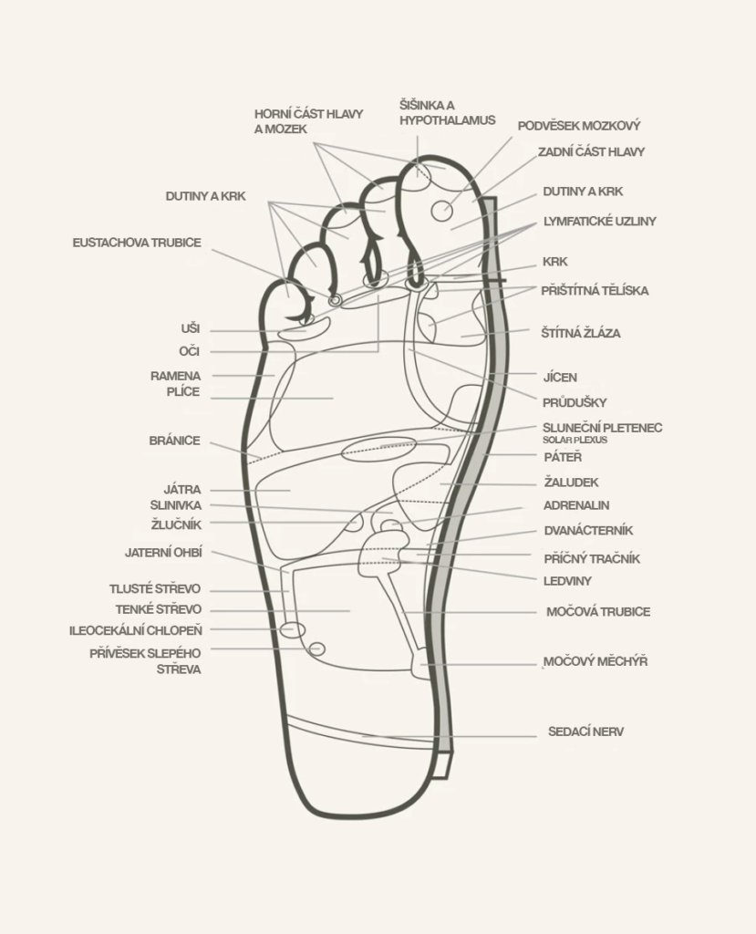 Reflexní body na noze, terapie Kutus Kutus